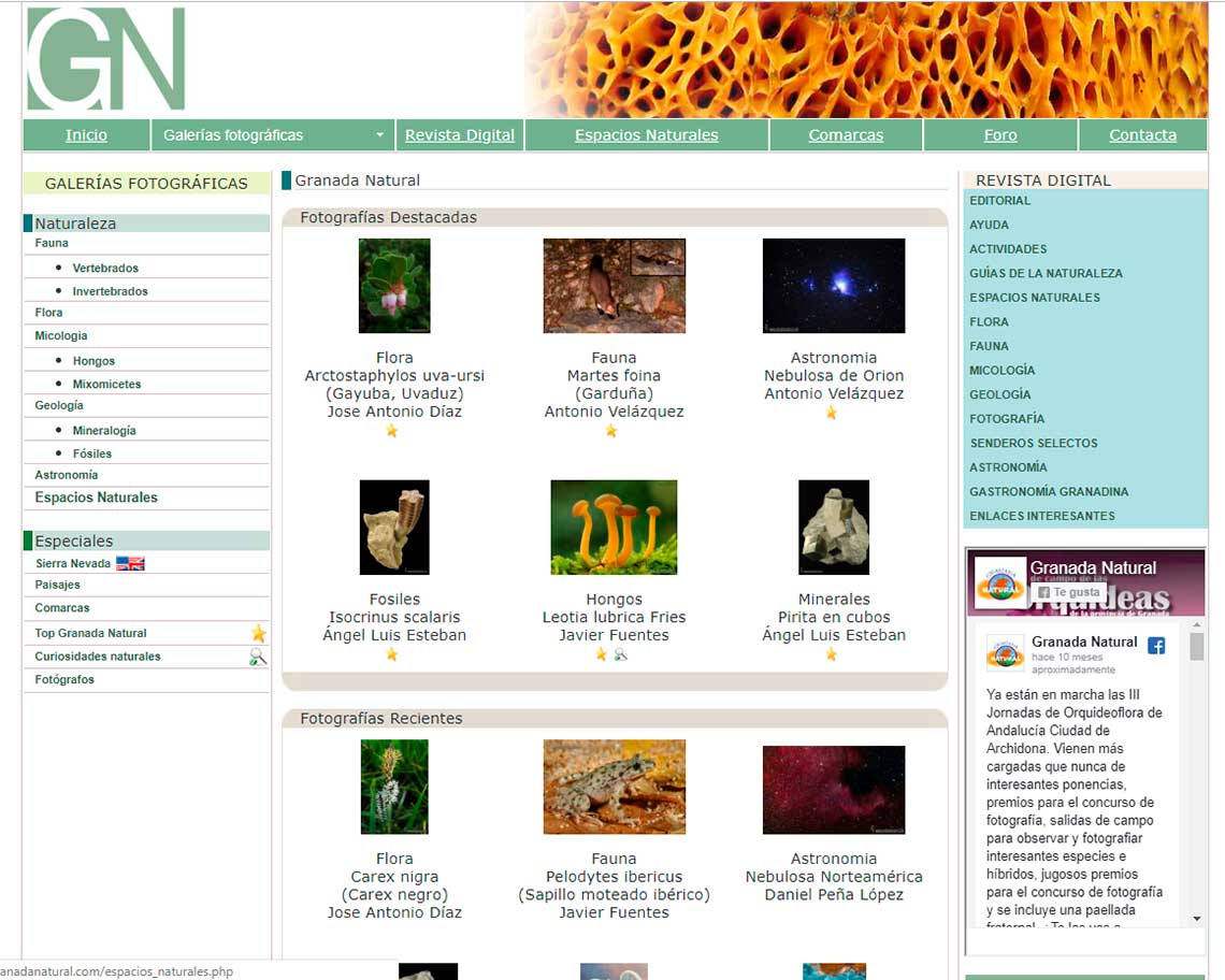 Desarrollo web a medida Granada Natural