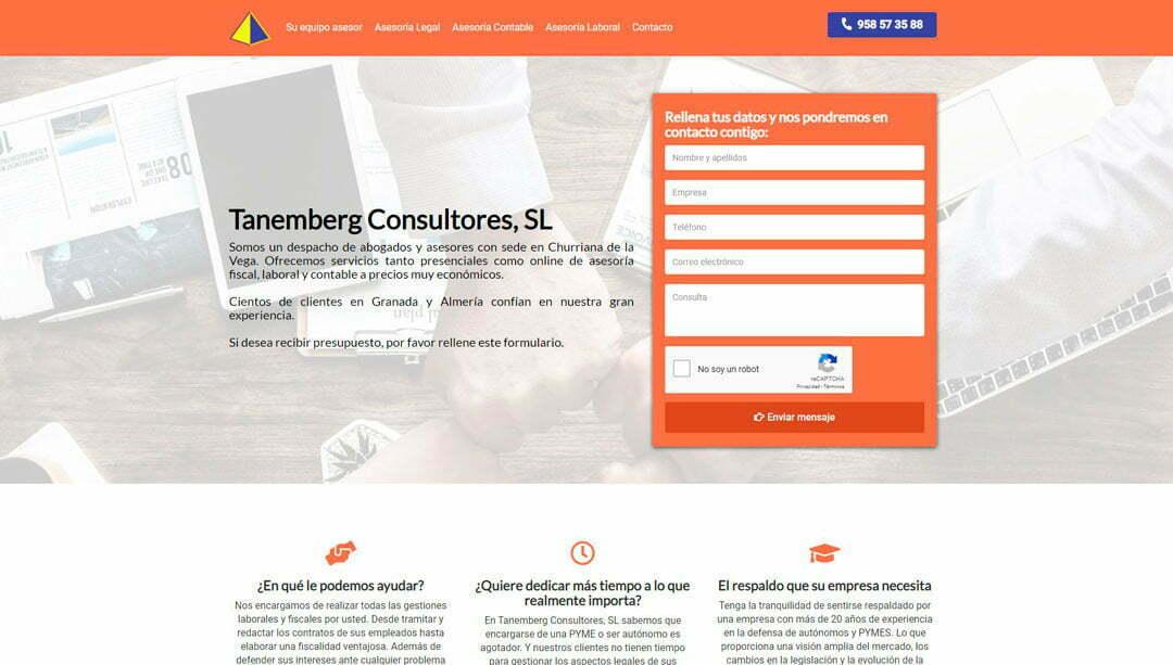 hosting-dominio-web-asesoria-tanemberg-portfolio